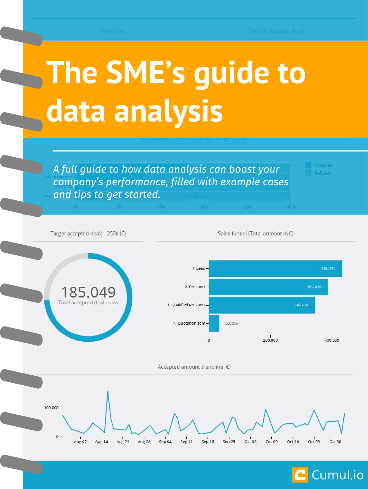 Whitepaper: The SME's guide to data analysis